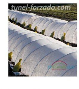 túnel en el campo